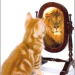 15 věcí, které nedělá sebevědomý člověk