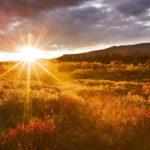 15 denních návyků pro štěstí a úspěch